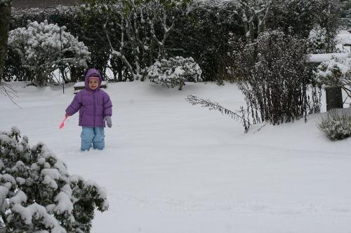 SnowAvery1