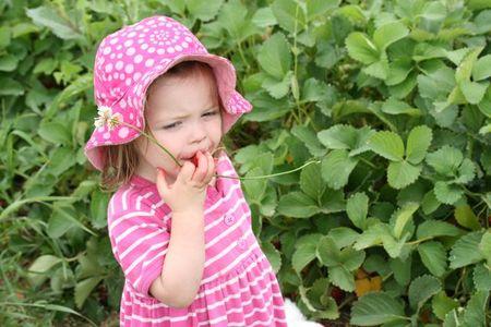 StrawberryClara