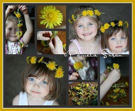Dandelion Collage-1