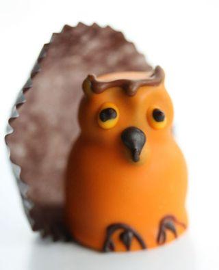 Owl truffle
