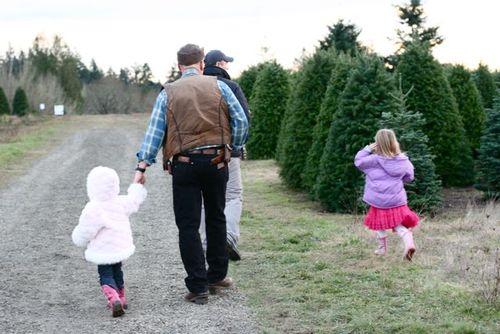 Christmas tree 2010-1