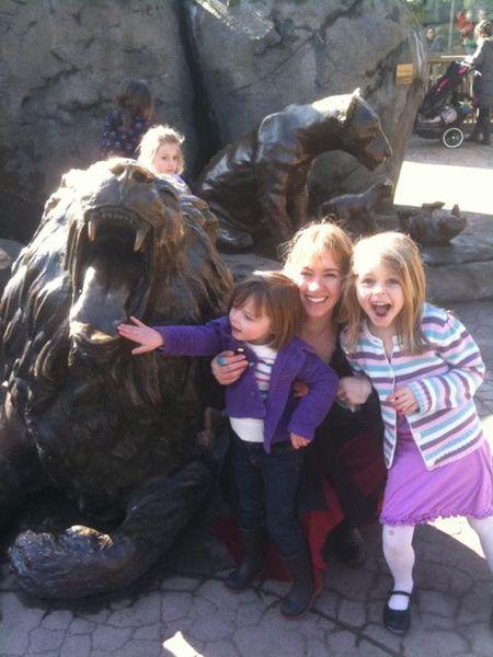 Zoo lion february 2011