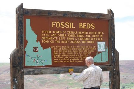 Fossil beds 11