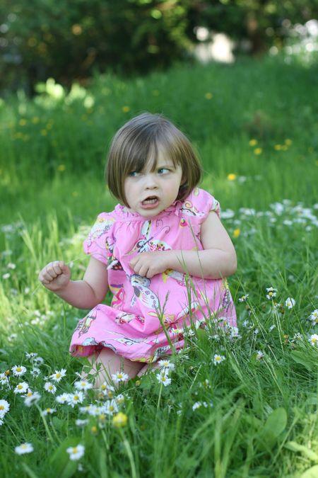 Daisy picking -C