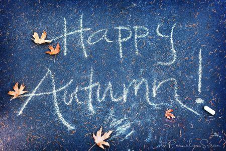 Autumn-15