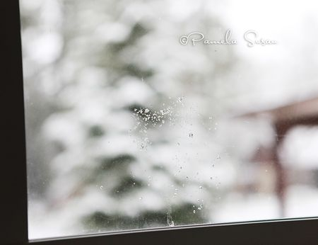 Window-hit-by-snowball