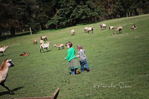 Papa-with-girls-farm-6