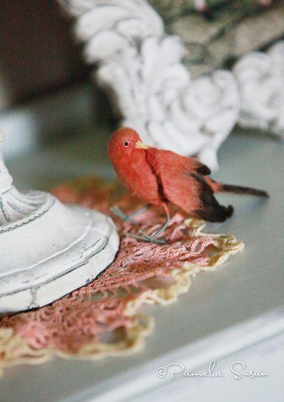 Dresser-bird