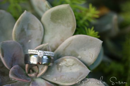 Heidi-ring-succulent