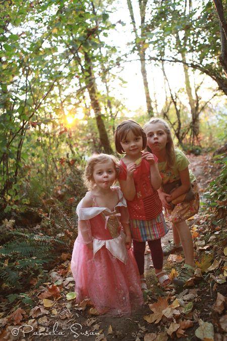 Fairy-house-forest-6