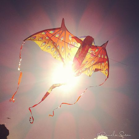 Dragon-kite-flying-1