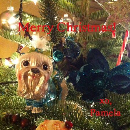 Christmas-Eve-dog