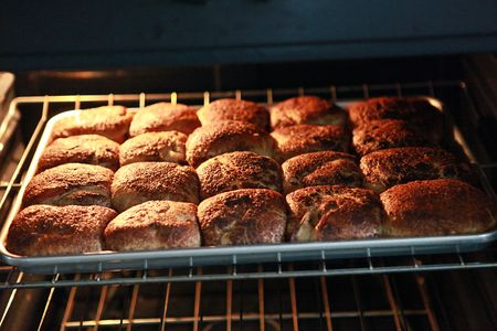 Cinnamon-buns-1