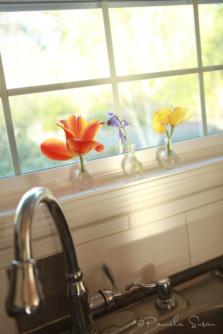 Earth-Day-kitchen-sink-flowers-2