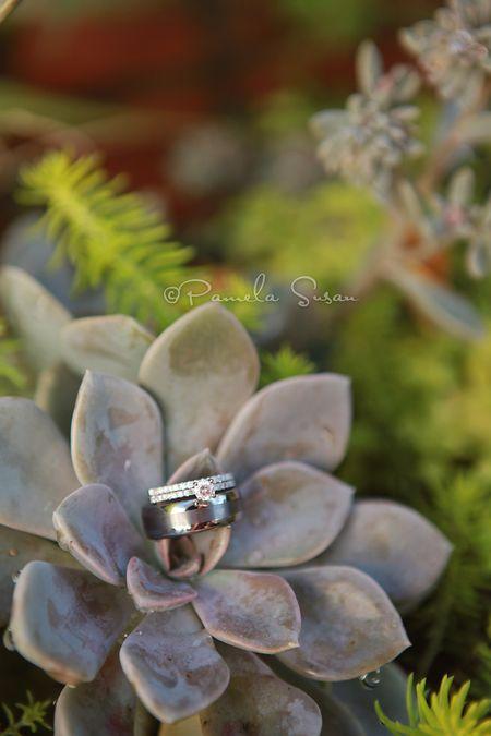 Heidi-ring-succulent-2