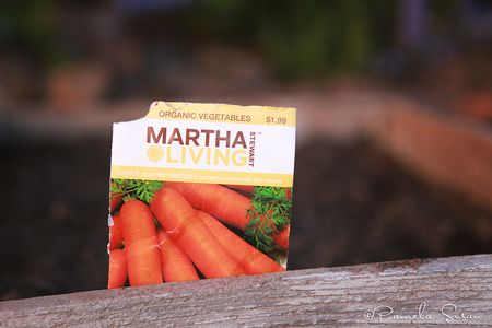 Carrot-earth-day-2
