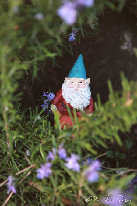Earth-Day-gnome-garden