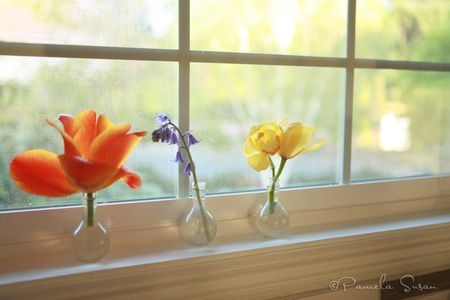 Earth-Day-kitchen-sink-flowers