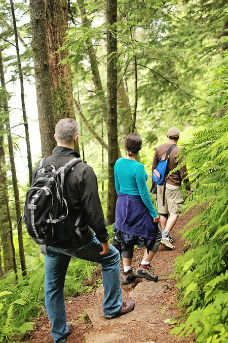 Alaska-ketchikan-rainbird-trail-hike